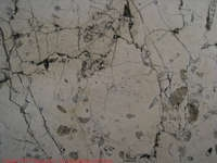 marble_with_fossils_4166